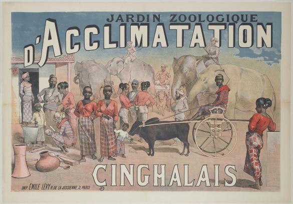 Jardin zoologique d 39 acclimatation cinghalais paris mus es - Musee en herbe jardin d acclimatation ...