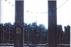 MAM-SC1542015-1